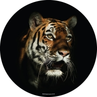Twilight Tiger Spare Tyre Cover