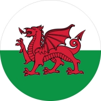 Welsh Dragon Spare Wheel Cover