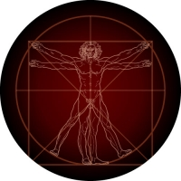 Vitruvian Man - Leonardo da Vinci's famous drawing on your spare wheel cover