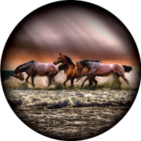 Image of Wild Horses at the beach on sunset. Spare Wheel Cover Design.