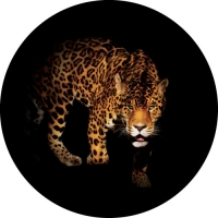 Leopard Spare Wheel Cover