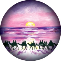Broome Sunset Camels. Beautiful sunset painting on your spare wheel cover.