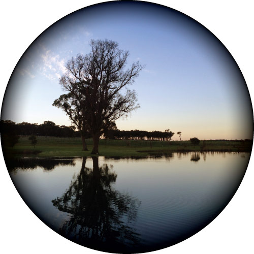 Serene Lake Spare Tyre Cover