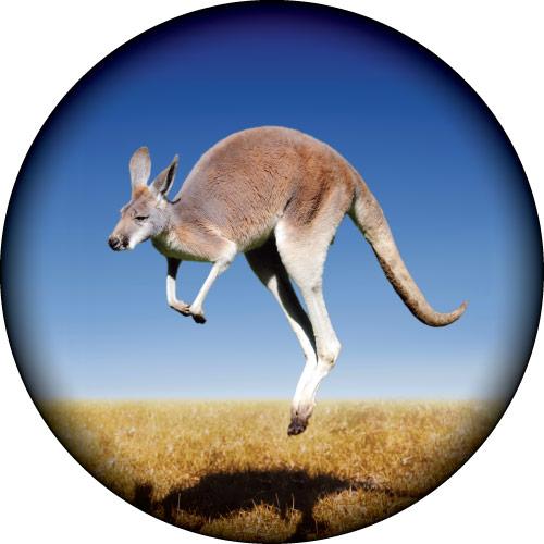 Kangaroo Spare Wheel Cover Design