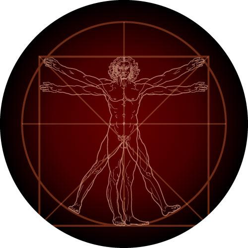 Vitruvian Man - Leonardo da Vinci's famous drawing on your spare wheel cover